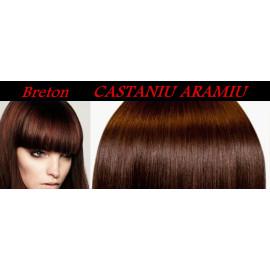 Bretoane cu Calota Castaniu Aramiu