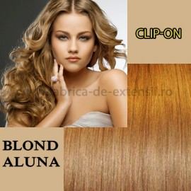 Clip-On Blond Aluna