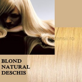 Extensii Front Lace (Semiperuca) DeLuxe Blond Natural Deschis