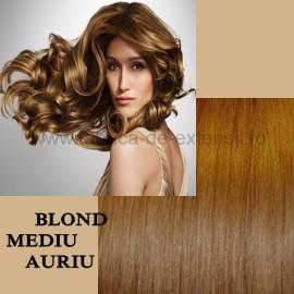 Extensii Front Lace (Semiperuca) DeLuxe Blond Mediu Auriu